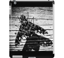fly back iPad Case/Skin