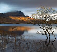 Old Man Of Storr. Sunrise. Trotternish. Isle of Skye. Scotland. by photosecosse /barbara jones