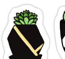 mini terrariums Sticker