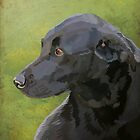 Bess - black labrador by Carl Conway