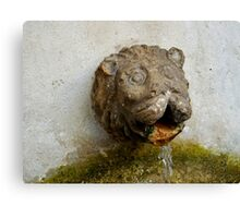 Lion's head water spout, Alfama, Lisbon, Portugal Canvas Print