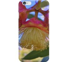 Kingsmill's Mallee iPhone Case/Skin
