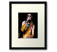 Todd Rundgren In Concert Framed Print