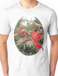 Old red Unisex T-Shirt