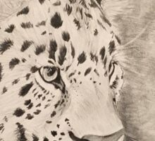 Graphite Leopard Sticker