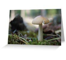 Brownsea Mushroom Greeting Card