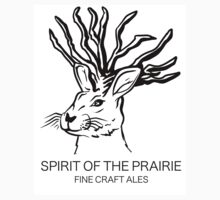 Spirit of the Prairie  by Brandon Matlock
