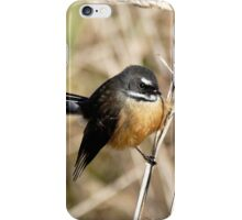 Posing In The Grasses - Fantail - NZ iPhone Case/Skin