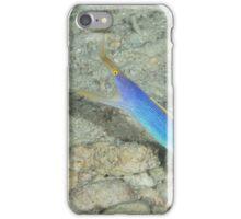 Blue Ribbon Eel iPhone Case/Skin