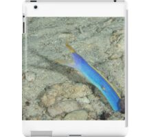 Blue Ribbon Eel iPad Case/Skin