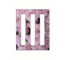 rose paramore Art Print