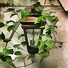 Lantern on the Wall by Eileen McVey