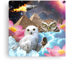 I Dream of Space Owls Metal Print