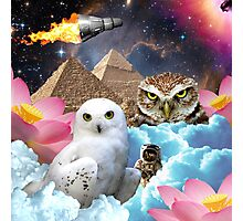 I Dream of Space Owls Photographic Print