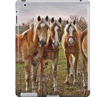 Natural Blondes iPad Case/Skin