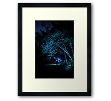 Arched tree with light paint Framed Print