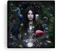The Feather Mistress Canvas Print