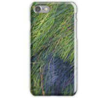 Sea Grass at Sunrise iPhone Case/Skin