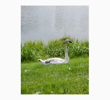 Swan taking a break from swimming Unisex T-Shirt