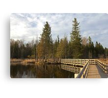Stony Swamp Walkway HDR Canvas Print