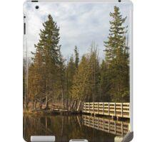 Stony Swamp Walkway HDR iPad Case/Skin