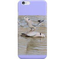 Turtle Dove - Wild Bird Background from Africa - Funny Nature iPhone Case/Skin