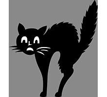 Black Cat Pattern Photographic Print
