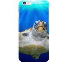 Turtle Rays iPhone Case/Skin