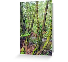 Mt Field National Park - a walk through nature Greeting Card