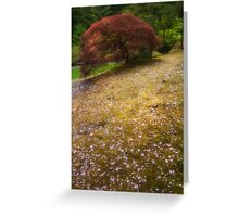 Japanese Maple Tree in Spring Greeting Card