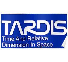 NASA Worm Logo TARDIS (White) Poster