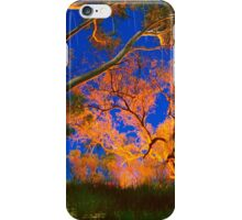 Firelight and star trails iPhone Case/Skin