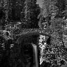 Christine Falls in Black and White by Harv Churchill