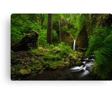 Waterfall of the Pacific Northwest Canvas Print
