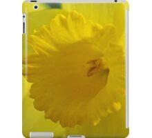 Verocity iPad Case/Skin