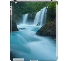 Waterfall of the Pacific Northwest iPad Case/Skin