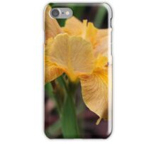 Spice of Life iPhone Case/Skin