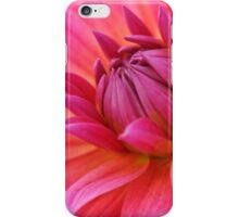 Close-Up of a Pink Dahlia iPhone Case/Skin
