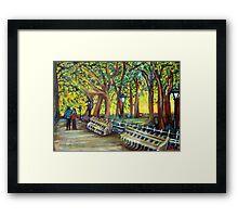 Central Park Framed Print