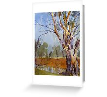 Gum Tree near Jemalong Weir, Forbes Greeting Card