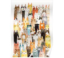 Multi-colored cat pattern  Poster