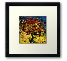 Van Gogh Mulberry Tree Framed Print