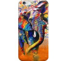 African Colours iPhone Case/Skin