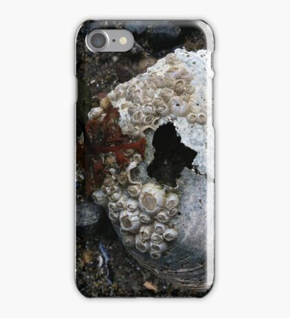Heart of the Ocean iPhone Case/Skin