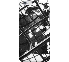 Through the World iPhone Case/Skin