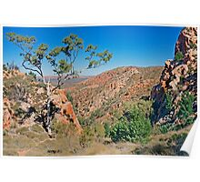 Outback Vista Poster