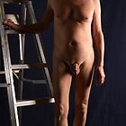 Ladder - 001 by ReadyMades