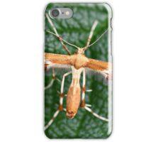 Plume Moth iPhone Case/Skin