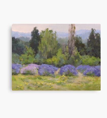 Lavender Clouds Canvas Print
