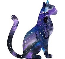 Galaxy Cat in Blue and Purple Photographic Print